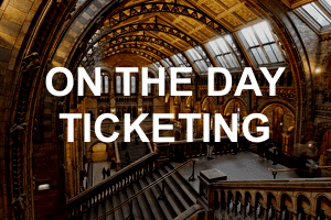 On the Day Ticketing